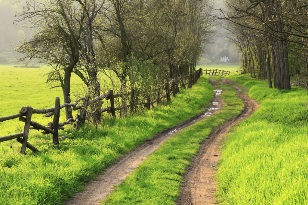 When you look back along the path, what was the turning point that led to everything else?