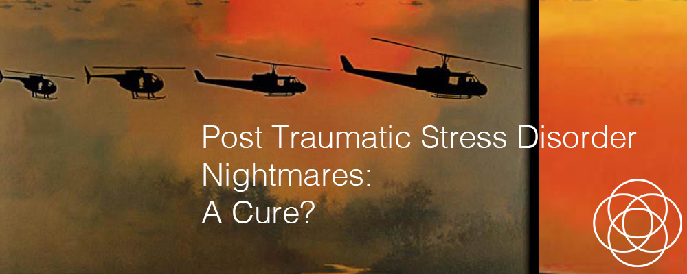 Post Traumatic Stress Disorder PTSD Nightmares A Cure Jane Teresa Anderson