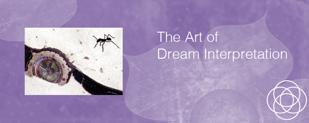 The Art of Dream Interpretation Jane Teresa Anderson