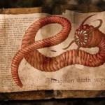 Nipple worms & radio experts
